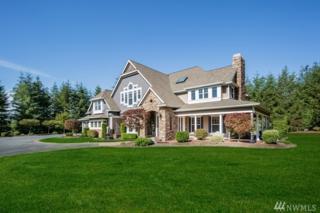 22010 SE Sawyer Ridge Wy, Black Diamond, WA 98010 (#1077055) :: Ben Kinney Real Estate Team