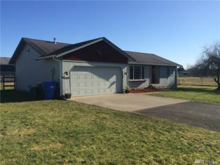9309 181st Wy SW, Rochester, WA 98579 (#1077198) :: Ben Kinney Real Estate Team