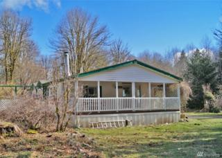 581 W Maple Rock Rd, Matlock, WA 98560 (#1077200) :: Ben Kinney Real Estate Team