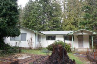 240 Elk Dr, Brinnon, WA 98320 (#1077366) :: Ben Kinney Real Estate Team