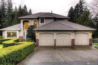 9818 190th Ave SE, Snohomish, WA 98290 (#1077621) :: Ben Kinney Real Estate Team