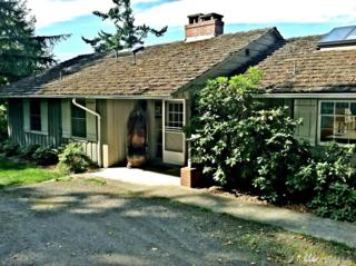 327 Sunset, Orcas Island, WA 98245 (#1077864) :: Ben Kinney Real Estate Team