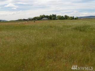 0 Smithson Rd. 24 Acres, Ellensburg, WA 98926 (#1077881) :: Ben Kinney Real Estate Team