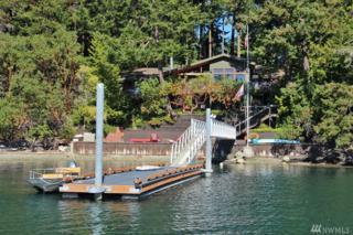 3 Brown Island, Brown Island, WA 98250 (#1077928) :: Ben Kinney Real Estate Team