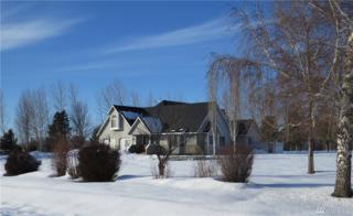 201 Lenes Rd, Ellensburg, WA 98926 (#1077935) :: Ben Kinney Real Estate Team