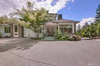 13207 230th Ave SE, Issaquah, WA 98027 (#1078220) :: Ben Kinney Real Estate Team