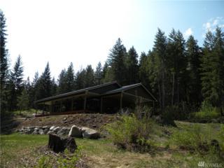 173 South Fork Gold Creek Rd, Carlton, WA 98814 (#1078228) :: Ben Kinney Real Estate Team