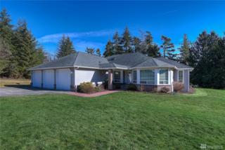 9593 New Dove Lane SE, Olalla, WA 98359 (#1078262) :: Ben Kinney Real Estate Team