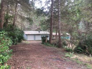 171 Fox Rd, Quilcene, WA 98736 (#1078513) :: Ben Kinney Real Estate Team