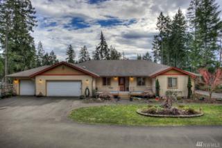 2021 E Mason Lake Dr W, Grapeview, WA 98546 (#1078667) :: Ben Kinney Real Estate Team