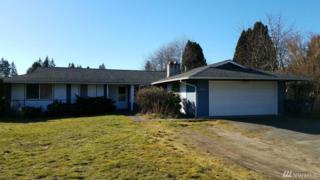 3470 SE Tamarack Dr, Port Orchard, WA 98366 (#1078689) :: Ben Kinney Real Estate Team