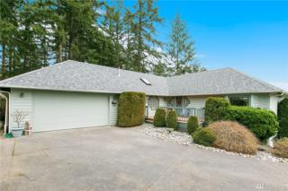 3524 58th Ave NW, Gig Harbor, WA 98335 (#1078778) :: Ben Kinney Real Estate Team