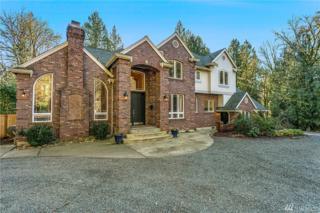 17019 246th Ave NE, Woodinville, WA 98077 (#1078828) :: Ben Kinney Real Estate Team