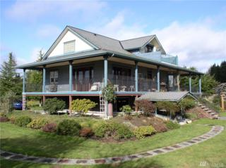 16106 Vashon Hwy SW, Vashon, WA 98070 (#1079037) :: Ben Kinney Real Estate Team