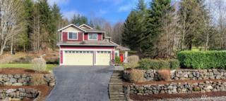 8611 189th Ave SE, Snohomish, WA 98290 (#1079093) :: Ben Kinney Real Estate Team