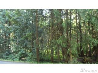 5029 75th Ave SW, Olympia, WA 98512 (#1079096) :: Ben Kinney Real Estate Team