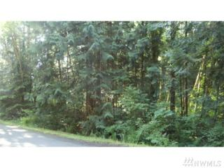 5033 75th Ave SW, Olympia, WA 98512 (#1079097) :: Ben Kinney Real Estate Team