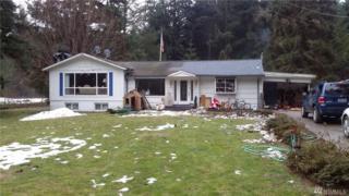 682 Silverbrook Rd, Randle, WA 98377 (#1079236) :: Ben Kinney Real Estate Team
