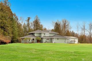 959 E Axton Rd, Bellingham, WA 98228 (#1079239) :: Ben Kinney Real Estate Team