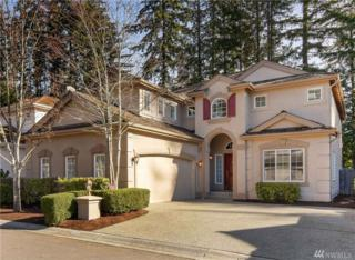 2902 257th Place SE, Sammamish, WA 98075 (#1079268) :: Ben Kinney Real Estate Team