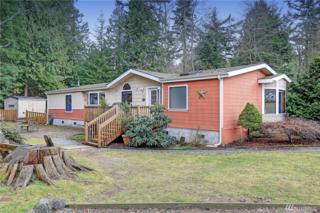 17510 W Lake Goodwin Rd, Stanwood, WA 98292 (#1079343) :: Ben Kinney Real Estate Team