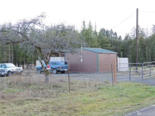1104 Koontz Rd, Napavine, WA 98532 (#1079376) :: Ben Kinney Real Estate Team