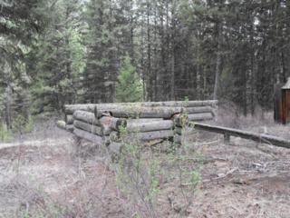 12345 W Fork Cougar Creek, Wauconda, WA 98859 (#1079422) :: Ben Kinney Real Estate Team
