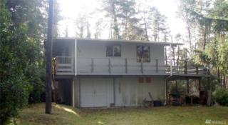 1206 231st Lane, Ocean Park, WA 98640 (#1079471) :: Ben Kinney Real Estate Team