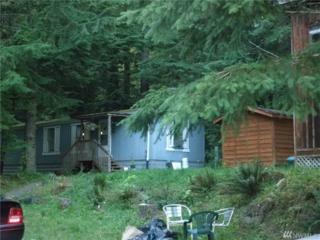 31315 Mt Tacoma Canyon Rd, Eatonville, WA 98328 (#1079516) :: Ben Kinney Real Estate Team