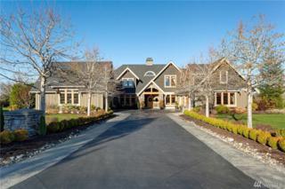 342 W Silverado Ct, Bellingham, WA 98226 (#1080030) :: Ben Kinney Real Estate Team