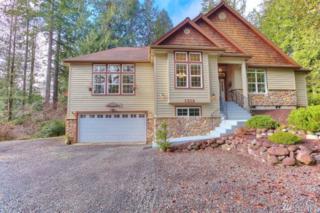 649 E Portage Rd, Shelton, WA 98584 (#1080143) :: Ben Kinney Real Estate Team