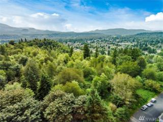 14000 Loves Hill Drive, Sultan, WA 98294 (#1080256) :: Ben Kinney Real Estate Team