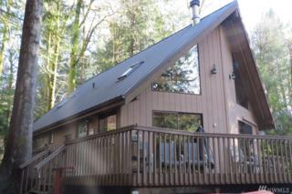 444 E Pointes Dr E, Shelton, WA 98584 (#1080437) :: Ben Kinney Real Estate Team
