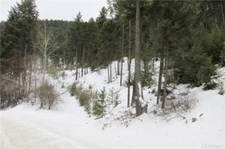 0-TBD Kettle River Rd, Curlew, WA 99118 (#1080540) :: Ben Kinney Real Estate Team