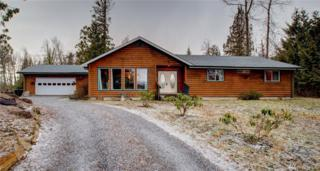 746 Kelly Rd, Bellingham, WA 98226 (#1080618) :: Ben Kinney Real Estate Team