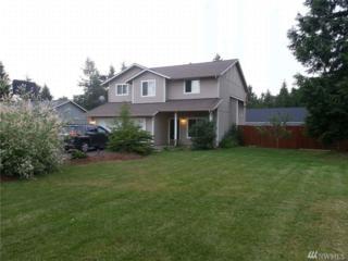20 E Swallow Ct, Allyn, WA 98524 (#1080624) :: Ben Kinney Real Estate Team