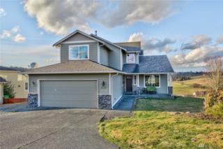 23747 Kamloop Ct, Mount Vernon, WA 98274 (#1080913) :: Ben Kinney Real Estate Team