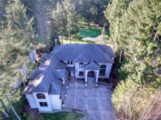 4508 126th St Ct NW, Gig Harbor, WA 98332 (#1080992) :: Ben Kinney Real Estate Team