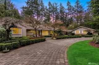 3810 131st Ave NE, Bellevue, WA 98005 (#1081151) :: Ben Kinney Real Estate Team