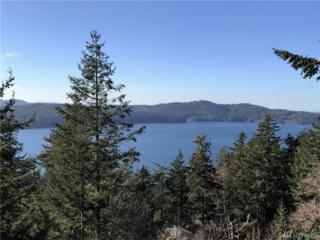 391 Highlands Dr, Orcas Island, WA 98245 (#1081155) :: Ben Kinney Real Estate Team