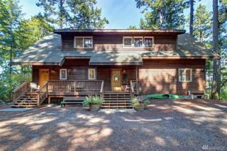 22 Brown Island, San Juan Island, WA 98250 (#1081218) :: Ben Kinney Real Estate Team
