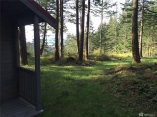 420 Cow Hill Rd, Orcas Island, WA 98279 (#1081407) :: Ben Kinney Real Estate Team