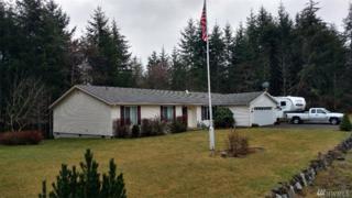 461 E Richardson Rd, Belfair, WA 98528 (#1081513) :: Ben Kinney Real Estate Team