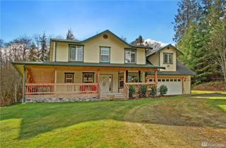 2399 Camano Real Place, Camano Island, WA 98282 (#1081538) :: Ben Kinney Real Estate Team