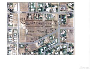 0 S Elm Ave, Warden, WA 98857 (#1081557) :: Ben Kinney Real Estate Team