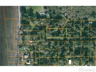 6-Lot Willaview Lane, Bay Center, WA 98586 (#1081570) :: Ben Kinney Real Estate Team