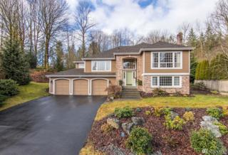 18911 203rd Ave NE, Woodinville, WA 98077 (#1081623) :: Ben Kinney Real Estate Team