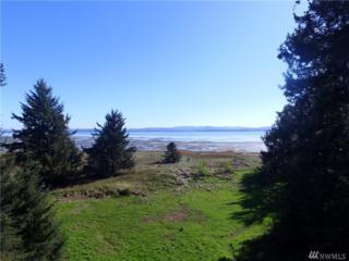 292-XX Joy Lane, Ocean Park, WA 98640 (#1081717) :: Ben Kinney Real Estate Team