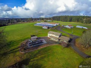 2104 Hwy 603, Winlock, WA 98596 (#1081809) :: Ben Kinney Real Estate Team