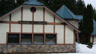 13807 Us Hwy 12, Packwood, WA 98361 (#1081917) :: Ben Kinney Real Estate Team